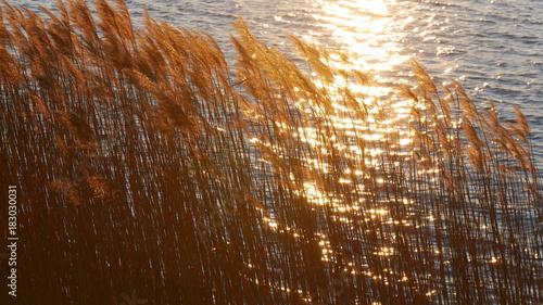 Tramonto caldo sul lago dorato © Paolo Goglio