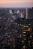 Tokyo skyline seen from Shinjuku