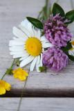 Wildflower Bunch - 183046462