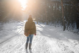 Woman walks a winter forest with the morning light streaming through the trees and illuminating the pine trees behind. - 183053804