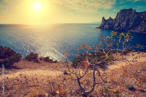 Tuinposter Beige Rocky sea coast