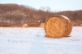 Haystack on the field covered by snow. - 183072265