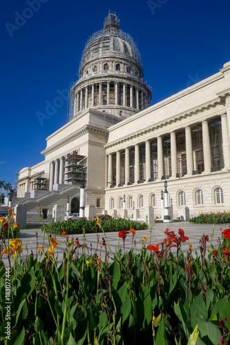 Plexiglas Havana Blumen vor dem Kapitol in Havanna