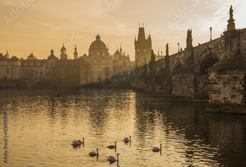 Fotobehang Zwaan Beautiful morning in Prague. Charles Bridge and Vltava River at dawn