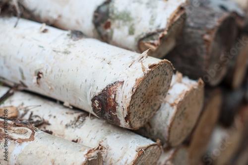 buches de bouleau pour bois de chauffage