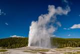 Old Faithful geyser in Yellowstone National Park - 183097877