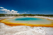Quadro Hot thermal spring in Yellowstone