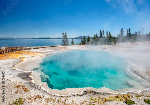 Foto op Canvas Pool Hot thermal spring in Yellowstone