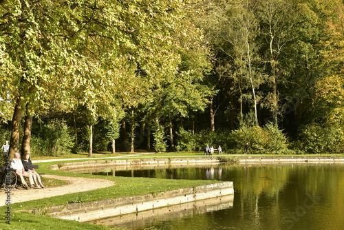 Fotobehang Lente Promenade et détente sous le soleil et les feuillage doré des arbres au bord de l'étang principal au Vrijbroekpark à Malines