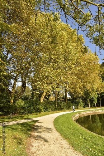Foto Murales Arbres à feuillage dorée le long de l'étang principal du Vrijbroekpark à Malines