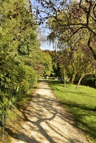 Tuinposter Weg in bos Chemin entre un bois dense et la pelouse longeant les berges de l'étang principal au Vrijbroekpark à Malines
