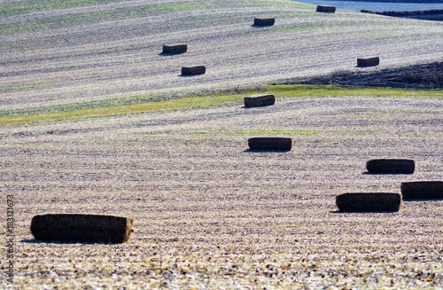 Keuken foto achterwand Donkergrijs Agricultural Abstraction