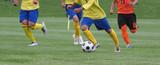 サッカー フットボール - 183131821