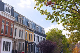 Autumn in a residential suburb of Washington DC, USA. Luxury colorful townhouses in leafy neighborhood. - 183143457