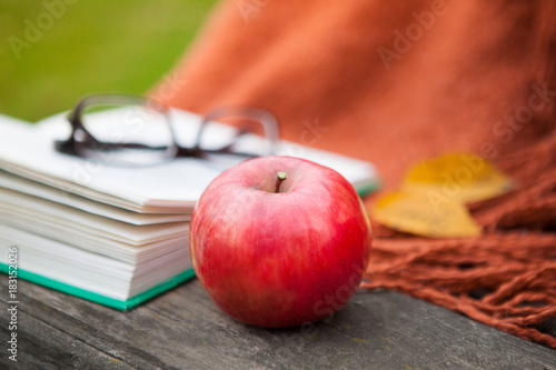 Fotobehang Baksteen Open book, glasses, apple and plaid in the autumn garden. Yellow leaves.