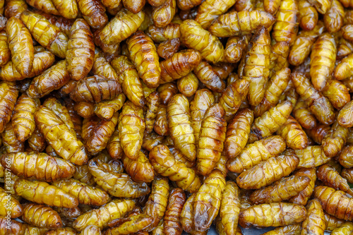 Poster Bangkok The fried insect unseen food in the market of asian.