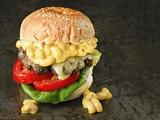 rustic american mac and cheese hamburger - 183160052