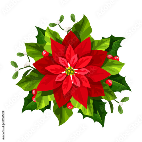 Vector red Christmas poinsettia flower isolated on a white background.