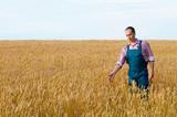Farmer inspecting wheat field - 183174202