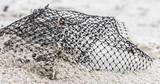 Netz mit Wassertropfen im Sand - 183174631