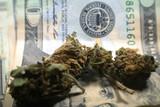 Marijuana Buds On A Twenty Dollar Bill High Quality