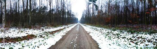 Foto op Canvas Weg in bos droga przez las zimą, panorama