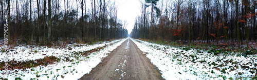 Fotobehang Weg in bos droga przez las zimą, panorama