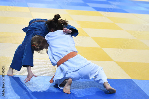 Girls compete in Judo Poster