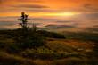 Beautiful view of sunrise at Babia mountain. Poland