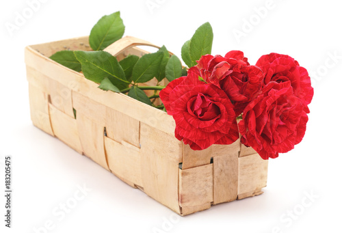 Red roses in the basket.