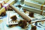 Marijuana Industry Profits High Quality