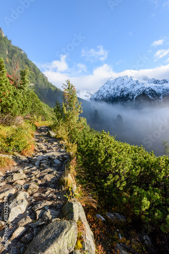 Fotobehang Bergrivier mountain tops in autumn covered in mist or clouds in sunny day