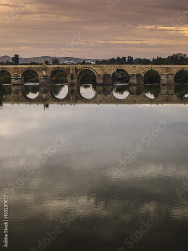 Sticker puente romano vertical