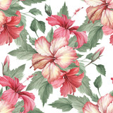 Seamless pattern with hibiscus. Hand draw watercolor illustration - 183260265