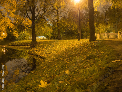River in the city park illuminated by street lamps Poster