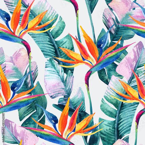 Akwarela tropikalny wzór z kwiatów bird-of-paradise.