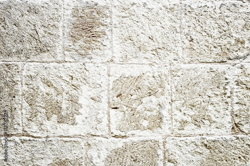 Tuinposter Stenen stone background texture brick