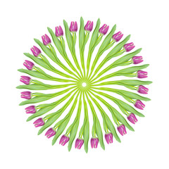 Magenta pink tulips in a circular collage