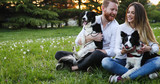 Beautiful couple cuddling and walking dogs outdoors - 183287492