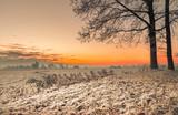 Winter im Teufelsmoor bei Sonnenaufgang - 183296099