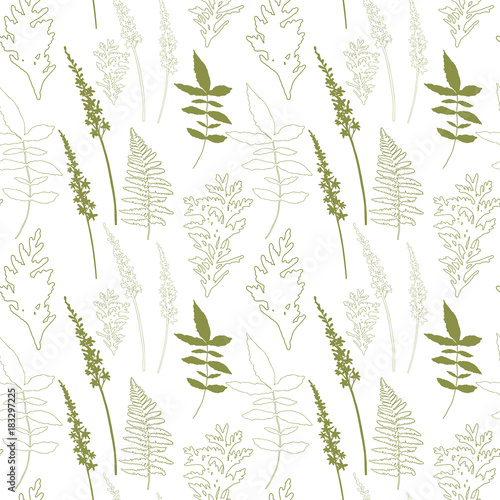 Floral vector seamless pattern with different hand drawn leaves, wild flowers and plants © dinadankersdesign