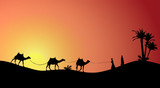 Silhouette of Caravan mit people and camels wandering through the deserts with palms at night and day. Vector Illustration. - 183307836