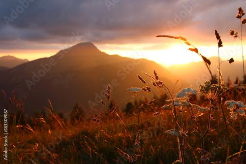 Foto op Plexiglas Bruin magnifique coucher de soleil dans les Alpes