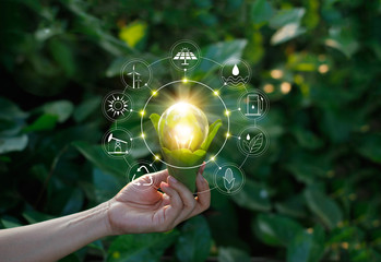 Hand holding light bulb on green nature with icons energy sources for renewable, sustainable development. Ecology concept. Elements of this image furnished by NASA.
