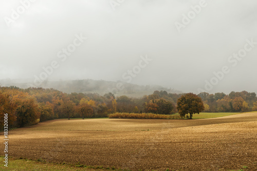 Fotobehang Natuur Autumn landscape in the countryside, plowed fields and woods, bad weather