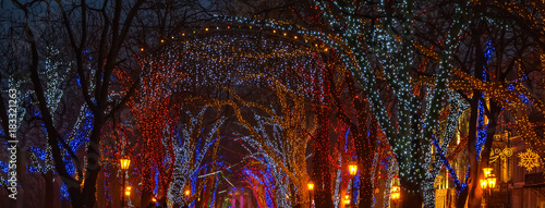 Wall mural Christmas illumination on downtown street. Banner size