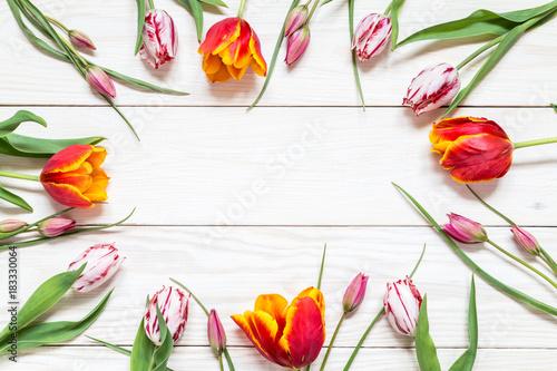 Fototapeta Image with tulips