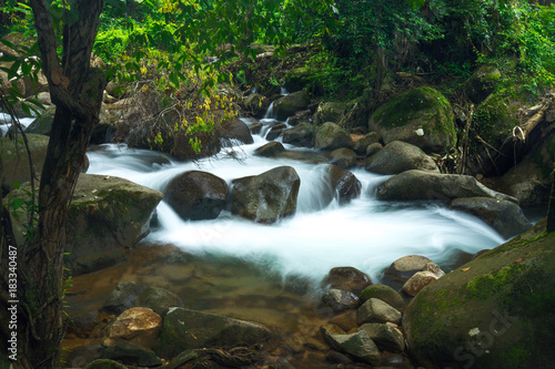 natural waterfall in deep forest and fern on rock - 183340487