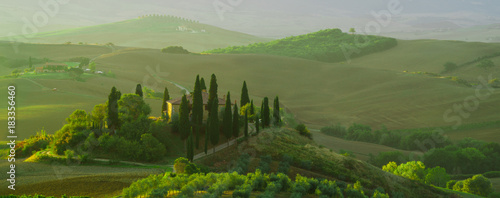 Wall mural Beautiful landscape in Tuscany, Italy.Farmhouse, vineyard and olive grove.