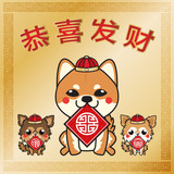 Chinba and Chihuahua dogs Celebrate Happy Chinese new year  , Dog year , gold theme background